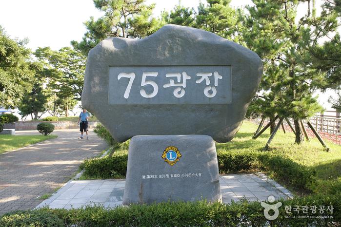 Place 75 (75광장)