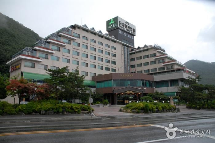 Danyang Hotel (단양관광호텔)