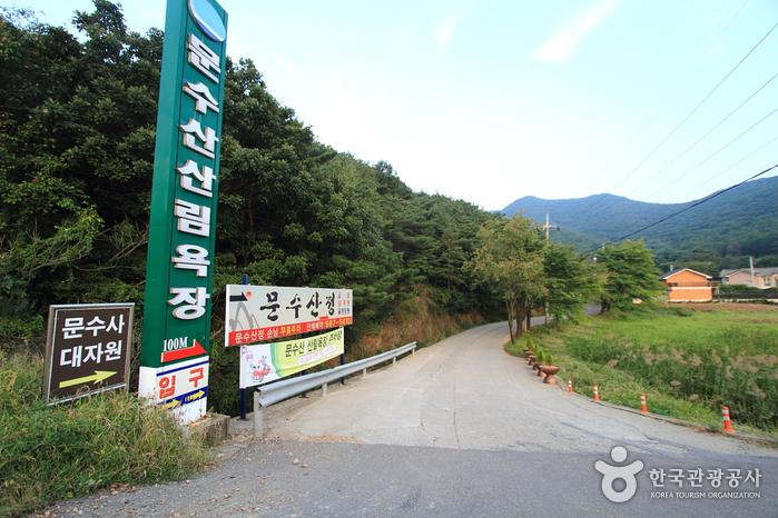 [평화누리길 2코스] 조강철책길