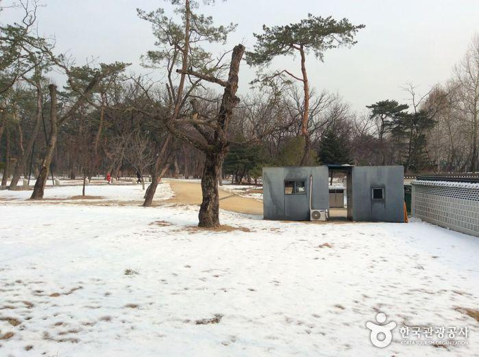 Taereung / Gangneung (a.k.a, Taegangneung) [UNESCO World Heritage] (서울 태릉과 강릉 [유네스코 세계문화유산])