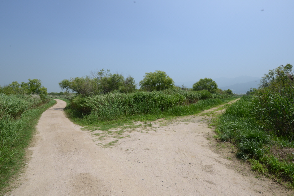 곳곳에서 길은 갈린다. 이처럼 더 반듯한 길(여기선 왼쪽)을 따르면 된다.