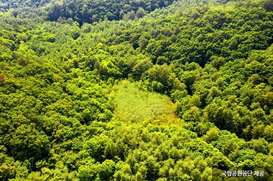 Odaesan National Park (오대산국립공원)