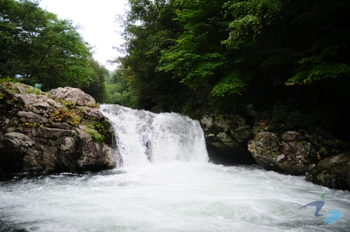 Jomurak Valley (조무락계곡)