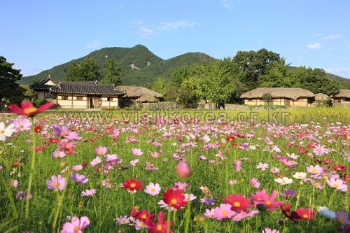 Oeam Folk Village (아산 외암민속마을)