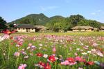 아산 외암민속마을