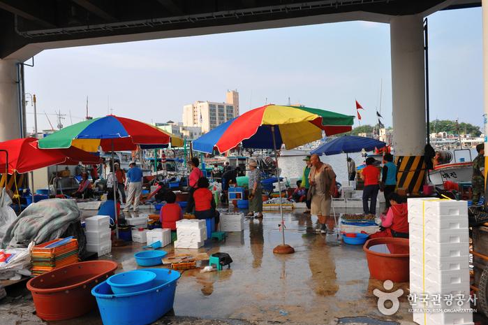 Jumunjin Port (주문진항)