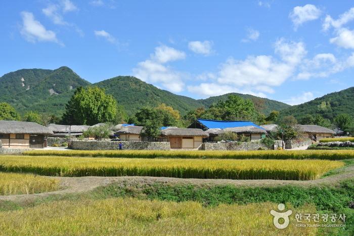 조선시대로의 시간여행, 돌담과 기와집이 있는 외암리 민속마을