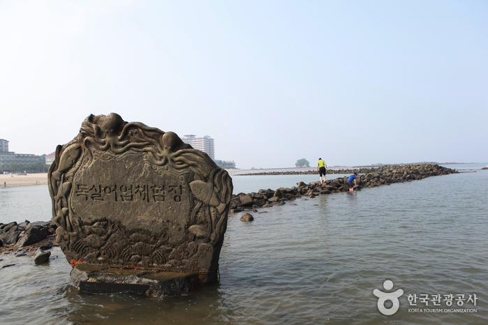 武昌浦海水浴場(무창포해수욕장)