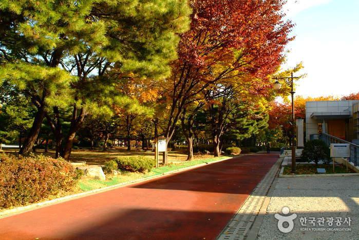 Парк Тосан (도산공원)6
