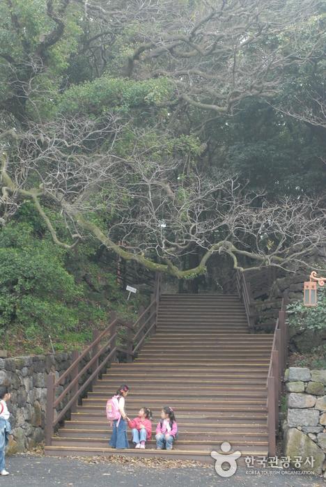 Geumsan Park (Nabeup...
