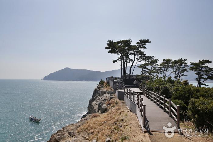 해안절벽 마끝은 지심도 최고의 절경이다.
