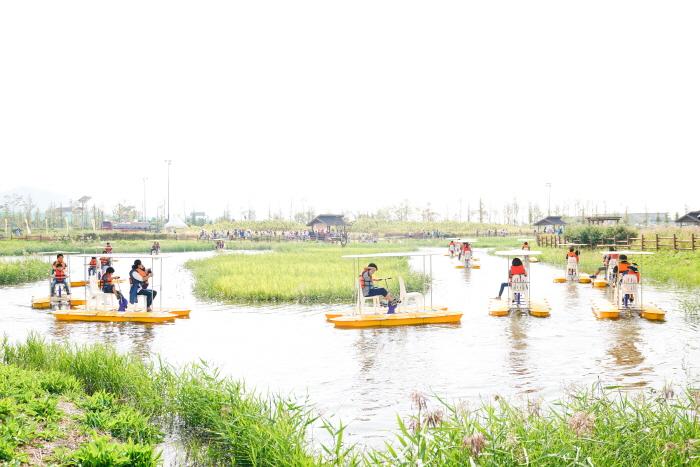 Экологический фестиваль Кэтколь в Сихыне (시흥갯골축제)3