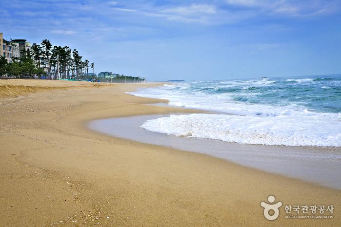 Strand Gangneung Gyeongpo (강릉 경포해수욕장)