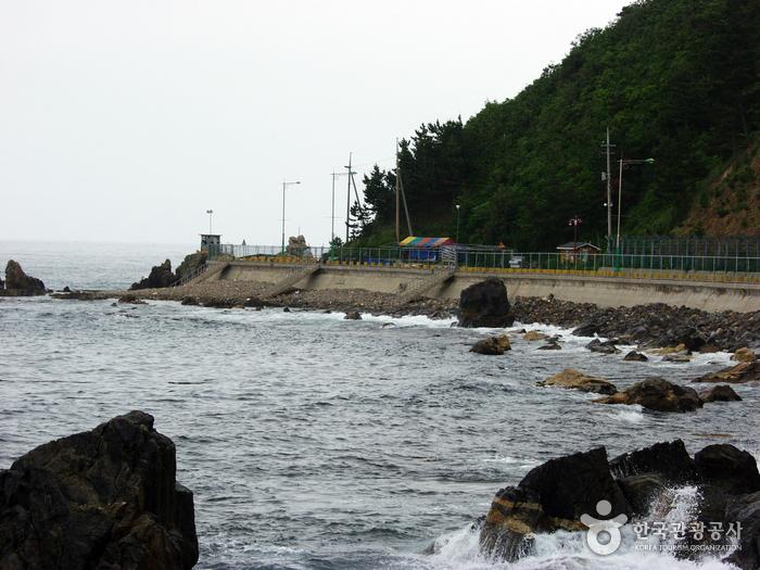 거진11리해변