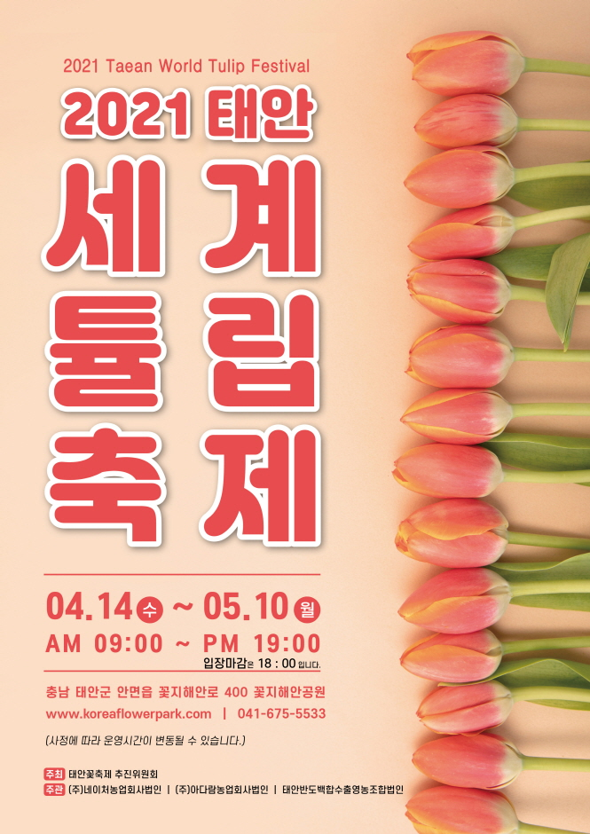Festival de los Tulipanes de Taean (태안 튤립 축제)