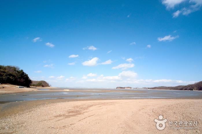 Daebudo Island (대부도)