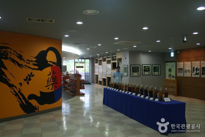 Daegu Yangnyeongsi Oriental Medicine Cultural Center (대구약령시 한의약박물관)