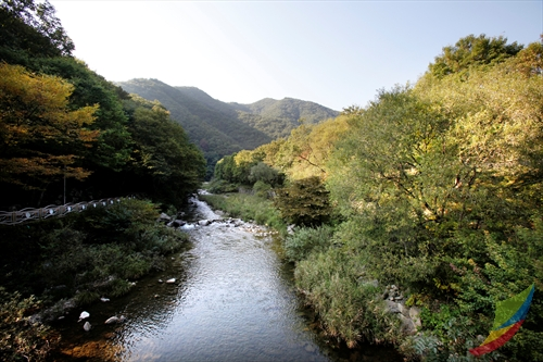 Banghwadong Natural Recreation Forest (방화동자연휴양림)
