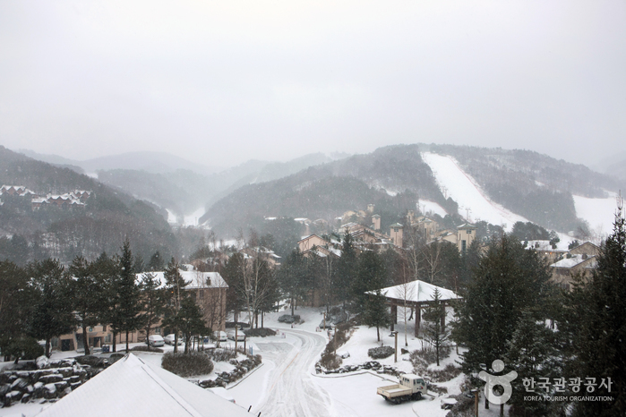 Daegwallyeong Special Tourist Zone (대관령 관광특구)