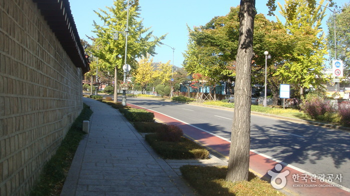 The Street in front of Cheongwadae (The Blue House) (청와대 앞길)