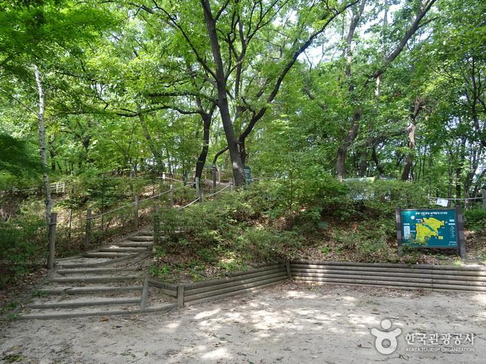 梧桐近隣公園(오동근린공원)