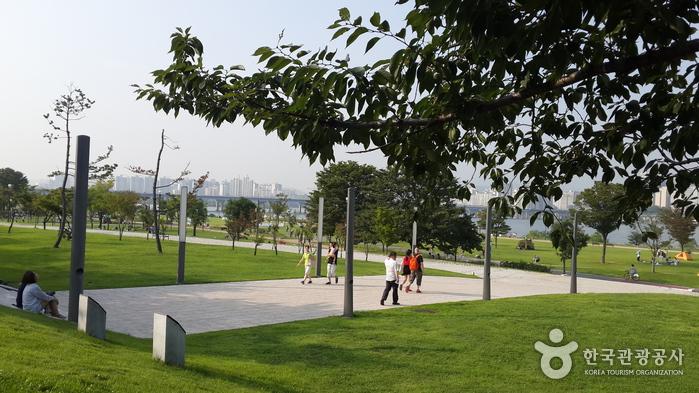 漢江市民公園 汝矣島地区(汝矣島漢江公園)(한강시민공원 여의도지구(여의도한강공원))