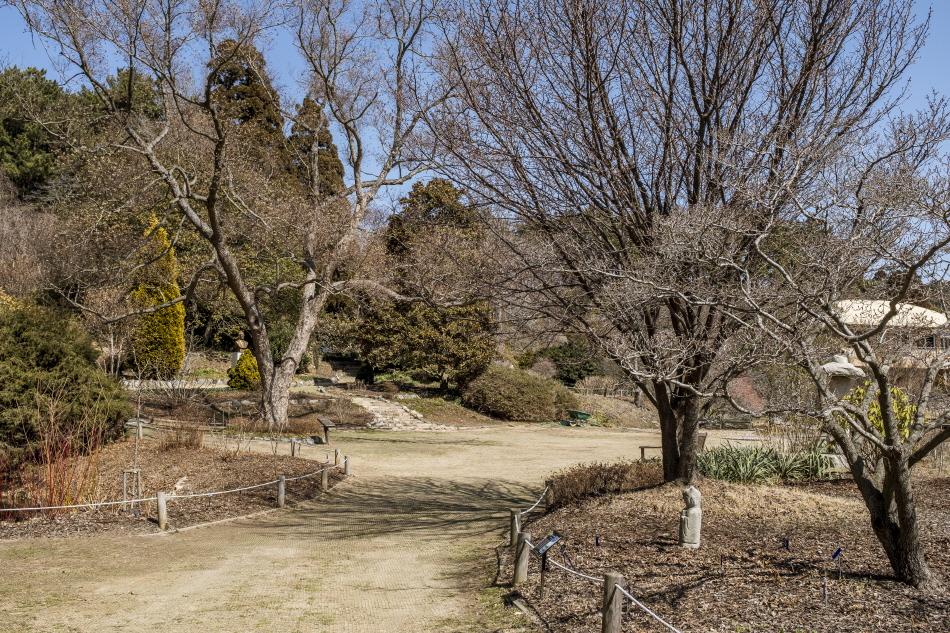 우리나라에서 가장 많은 식물 종류를 보유한 천리포수목원