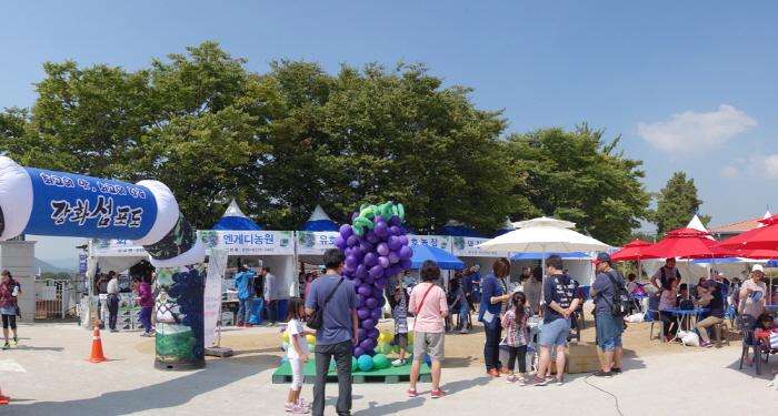 강화섬포도축제 2019