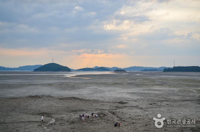 Village des pêcheurs et des activités de Ungdo (웅도어촌체험마을)