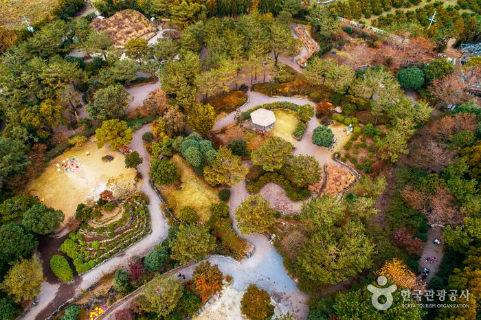 休愛里自然生活公園(휴애리 자연생활공원)