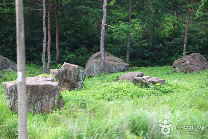 Gochang Dolmen Site [UNESCO World Heritage] (  [ ])