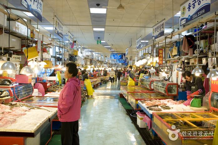Jagalchi Market Live...