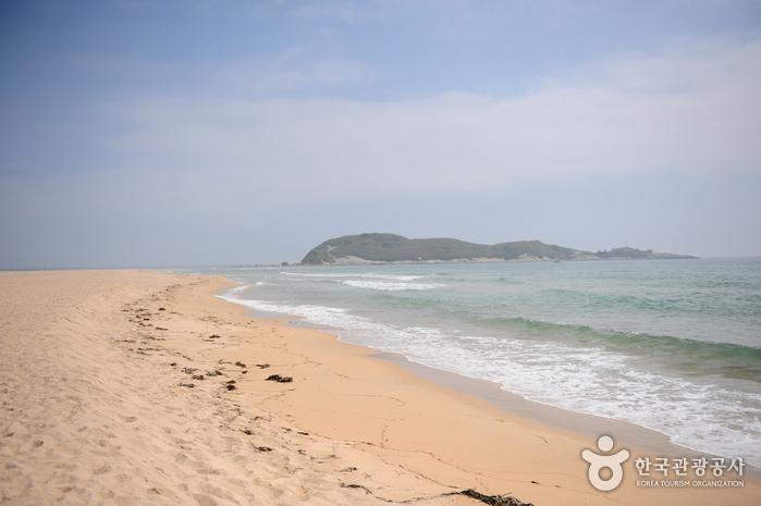 송지호 해수욕장