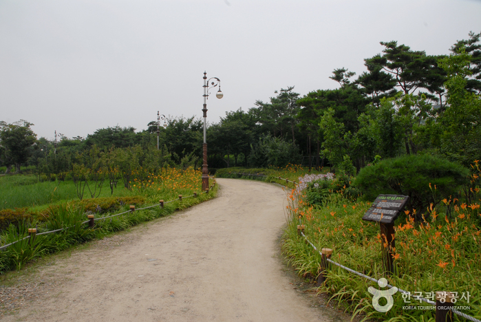 Hanbat Arboretum ()