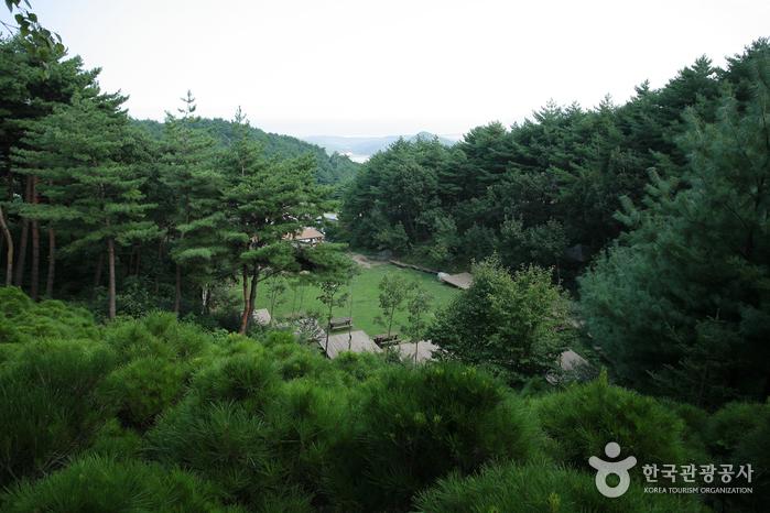 국립 칠보산자연휴양림