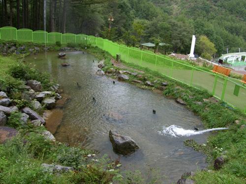 태백산 국립공원 사진11