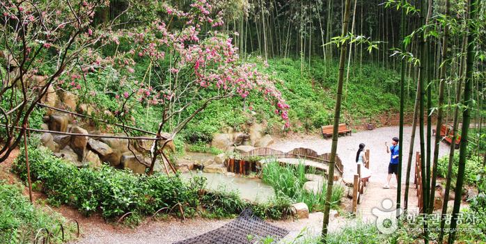 산책중간에 쉬어갈 수 있는 연못