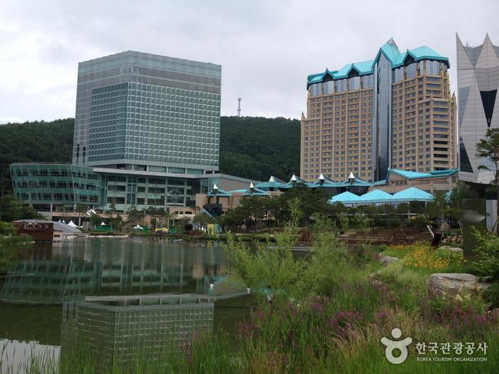 High One Hotel (하이원호텔)