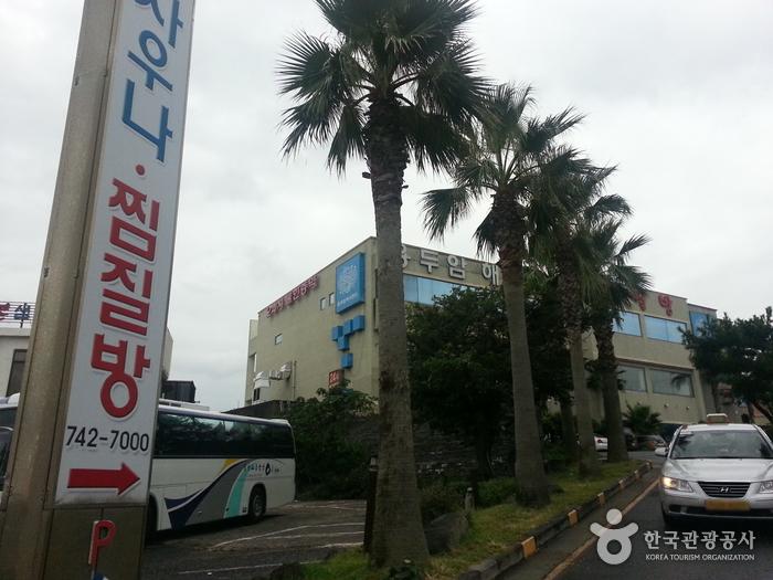 Yongduam Haesu Spa Land (용두암해수랜드)