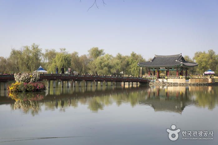 Seodong Park and Gungnamji Pond (서동공원과 궁남지)