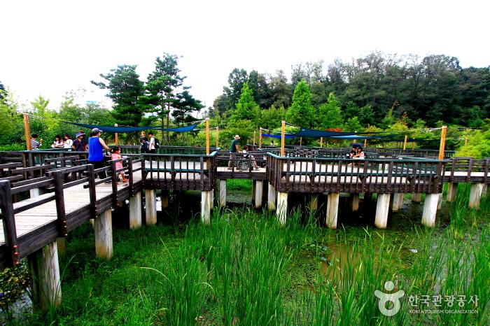 숲과 강 그리고 야경까지, 서울 도심 속 휴식과 낭만 여행 사진
