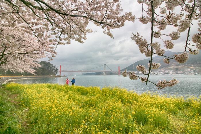 꽃 문신이 녹아 있는 애틋한 섬, 남해 사진