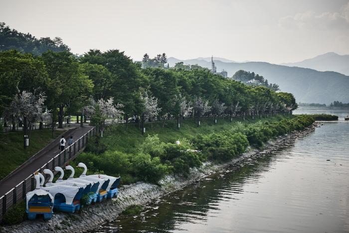 Парк Кончжичхон (공지천(황금비늘테마거리))13