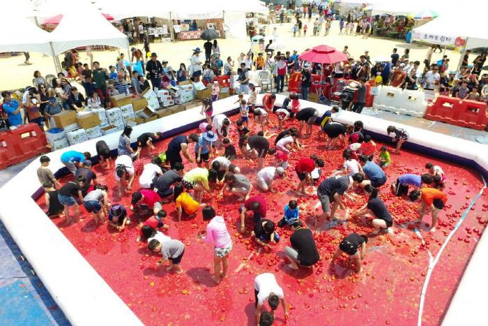 퇴촌 토마토 축제 사진