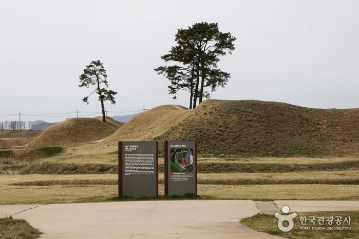 청주 정북동 토성