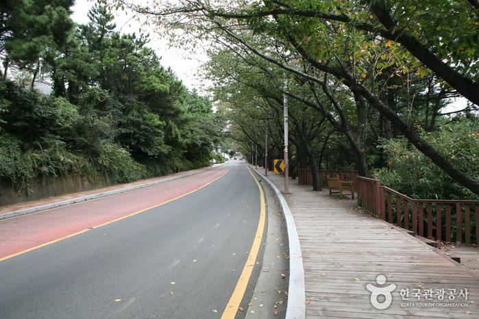 Дорога Тальмачжи на Хэундэ (해운대 달맞이길)2