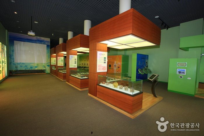 Музей корейской медицины Санчхон (산청 한의학박물관)5