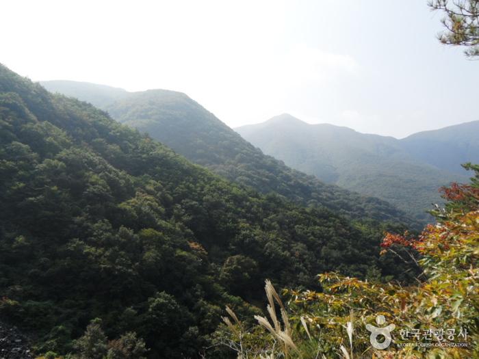 迦智山道立公園(梁山)(가지산도립공원(양산))
