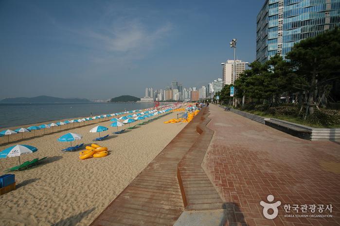 Gwangalli Beach (광안리해수욕장)