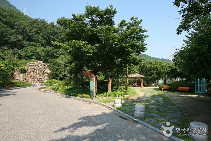 Парк Апсан в городе Тэгу (대구앞산공원)10